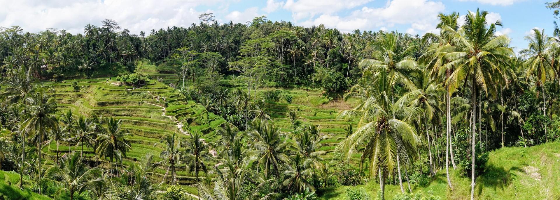 Island Hopping in Indonesia